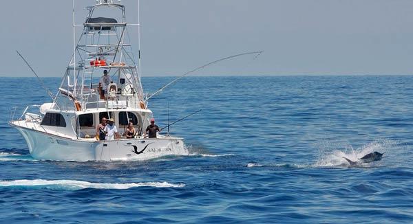 jacinta catching marlin