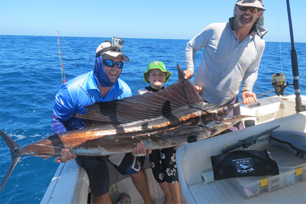 sailfish for Dylan