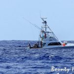 bounty hunter marlin
