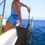 sailfish for jennifer