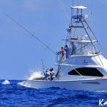 kanahoee black marlin