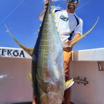 Ron yellowfin