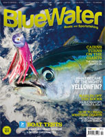 bwcover