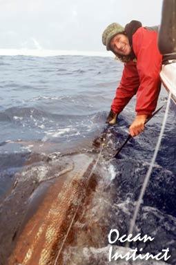 oceaninstinct2