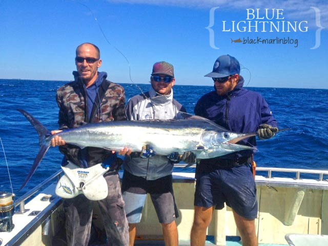 blue-lightning-marlin