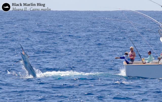 Linden stadium 2016 black marlin blog for Moana fishing pole