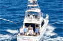 Sea Fever Sport Fishing