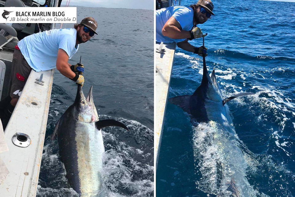 2018 fishing just gets better and better! » Black Marlin Blog