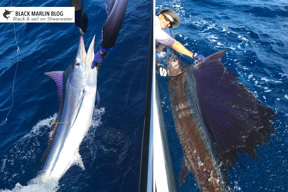 Double digit weekend of fun » Black Marlin Blog