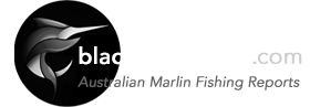 Black Marlin Blog